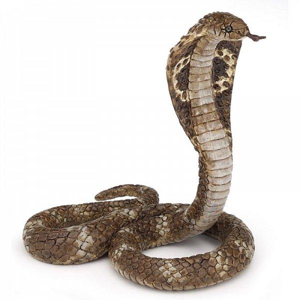 opțiune strategie șarpe
